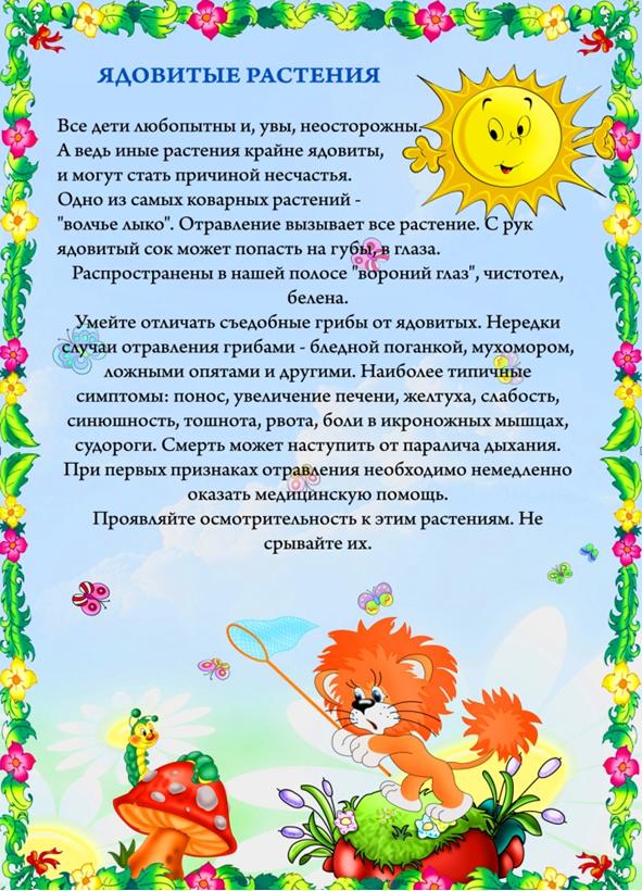 Картинки по запросу информация о ядовитых растениях  летом в детском саду